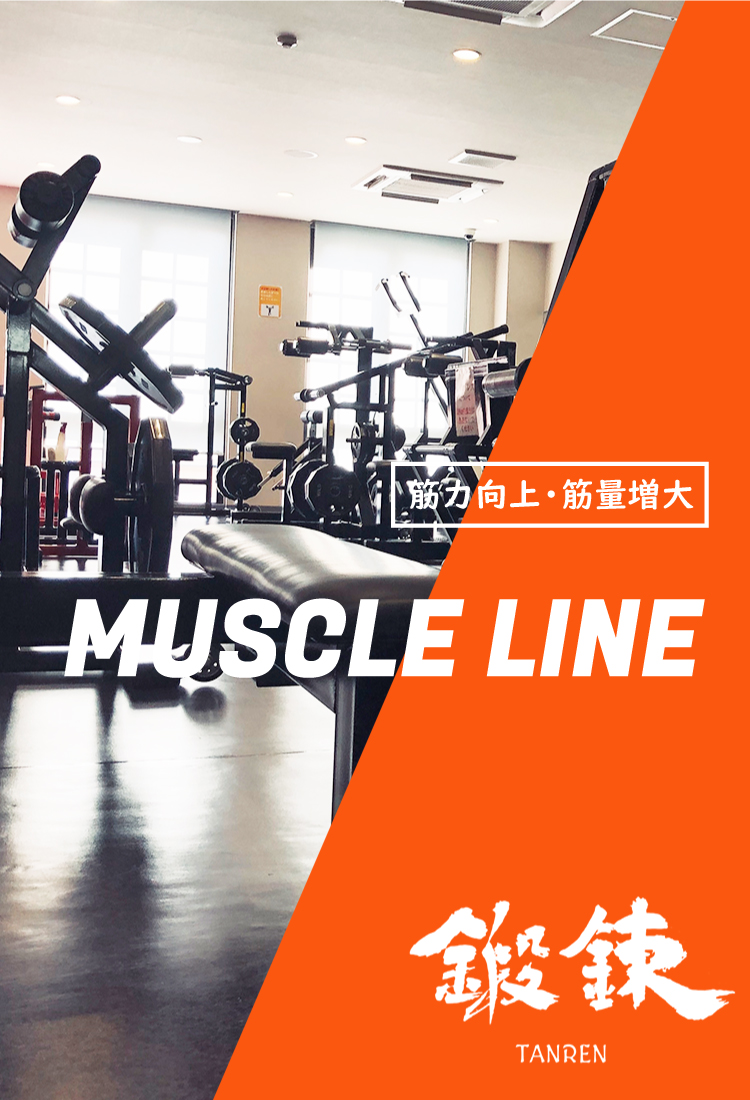 muscle3